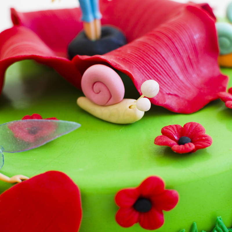 Tort Tinkerbell in maci